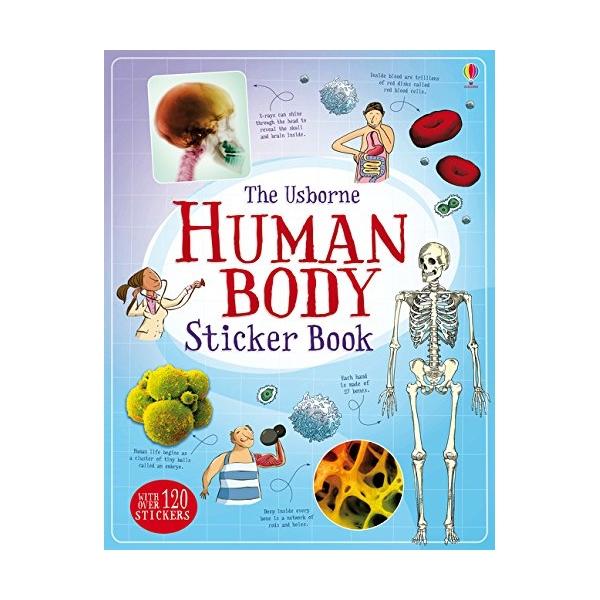 Human Body Sticker Book