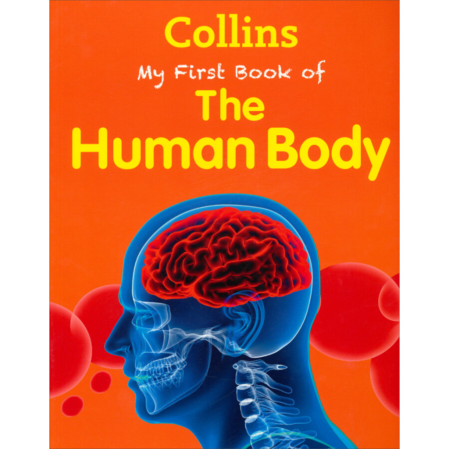 Collins My First Book of the Human Body (My First) - 1235327 , 1444737404608 , 62_5264893 , 1479000 , Collins-My-First-Book-of-the-Human-Body-My-First-62_5264893 , tiki.vn , Collins My First Book of the Human Body (My First)