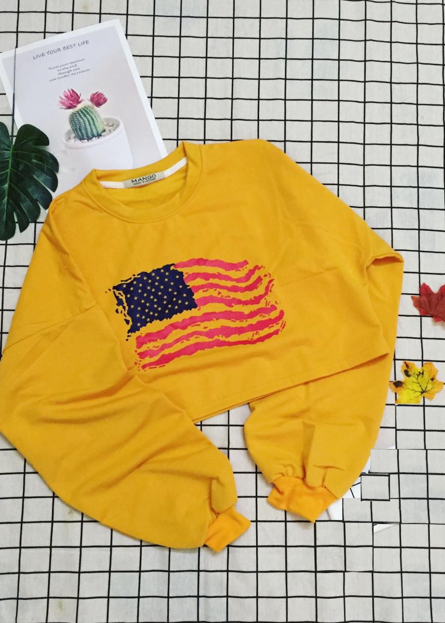 Áo croptop tay dài không nón hình cờ Mỹ
