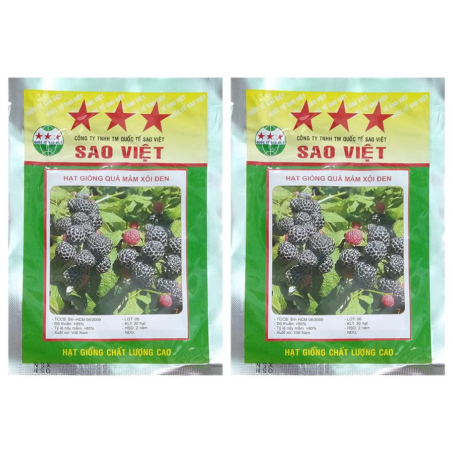 Bộ 2 túi 30h Hạt Giống Quả Mâm Xôi Đen Blackberry (Rubus Idaeus)