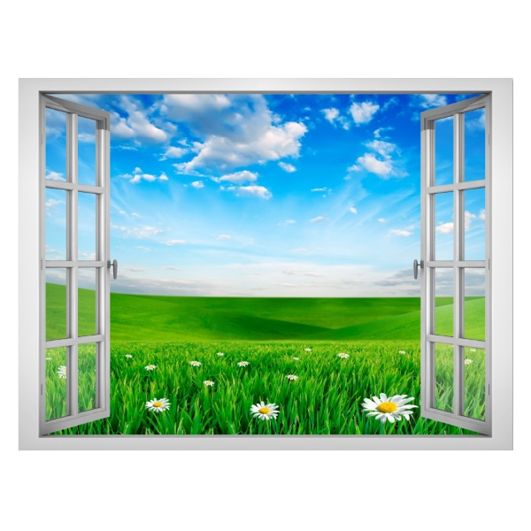 Tranh dán tường cửa sổ 3D cảnh thiên nhiên VT0008 - 2155537 , 4634649140450 , 62_13772459 , 432000 , Tranh-dan-tuong-cua-so-3D-canh-thien-nhien-VT0008-62_13772459 , tiki.vn , Tranh dán tường cửa sổ 3D cảnh thiên nhiên VT0008
