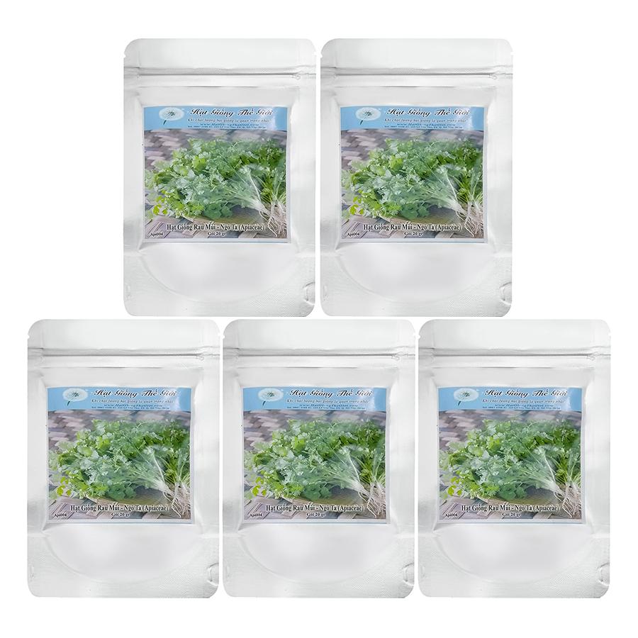 Bộ 5 Túi Hạt Giống Rau Mùi - Ngò Ta (Apiaceae) (20g/Túi)