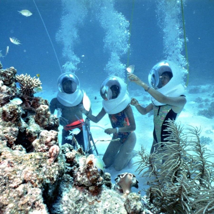 Tour đi bộ dưới biển Cù Lao Chàm - 4861274 , 1724705025616 , 62_16567949 , 1450000 , Tour-di-bo-duoi-bien-Cu-Lao-Cham-62_16567949 , tiki.vn , Tour đi bộ dưới biển Cù Lao Chàm