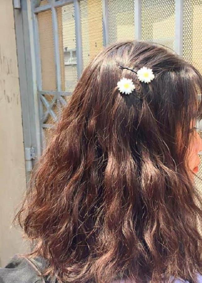 Kẹp tóc bông cúc - 2106277 , 9943749931093 , 62_13309104 , 59000 , Kep-toc-bong-cuc-62_13309104 , tiki.vn , Kẹp tóc bông cúc