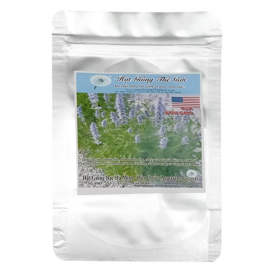 Hạt Giống Bạc Hà Mint Hàn Quốc (Agastache Rugosa) (50 Hạt)
