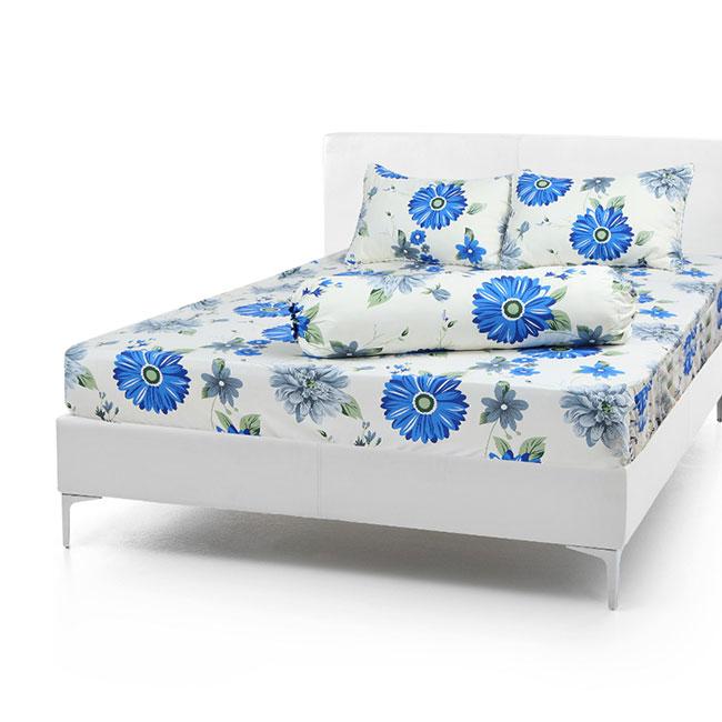 Bộ Drap Cotton Vải Thắng Lợi Áo Gối Chần Gòn 1,8x 2m hoa đồng tiền xanh dương