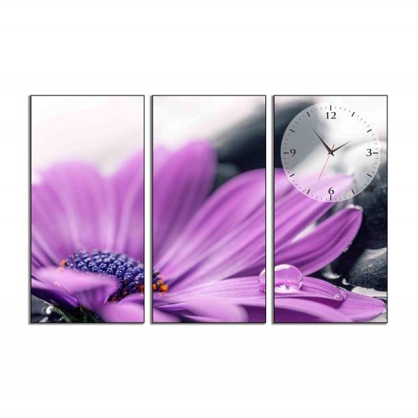 Tranh đồng hồ in Canvas Hoa cúc tím - 3 mảnh - 7069928 , 2818126818397 , 62_10351524 , 717500 , Tranh-dong-ho-in-Canvas-Hoa-cuc-tim-3-manh-62_10351524 , tiki.vn , Tranh đồng hồ in Canvas Hoa cúc tím - 3 mảnh