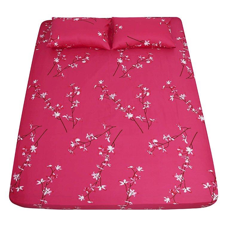 Bộ drap 3 món cotton solid korea cao cấp Grand - 5297378 , 9762392731368 , 62_4614129 , 934000 , Bo-drap-3-mon-cotton-solid-korea-cao-cap-Grand-62_4614129 , tiki.vn , Bộ drap 3 món cotton solid korea cao cấp Grand