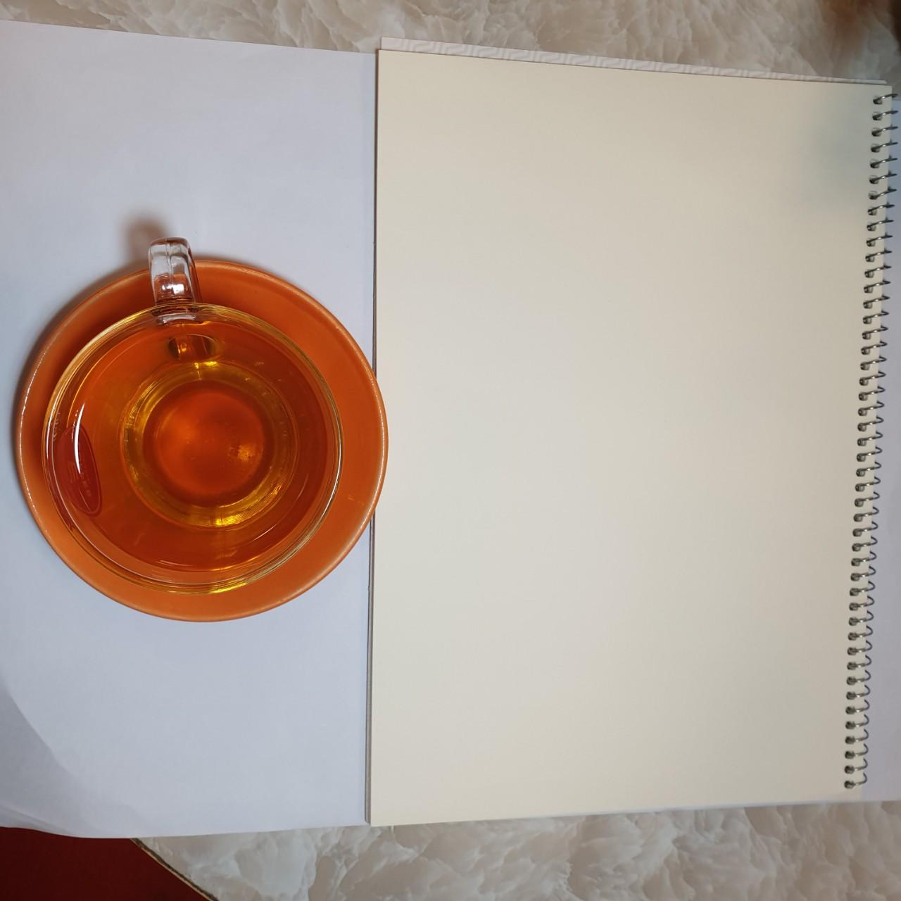 Bộ 2 quyển Vở vẽ lò xo A4 Stetch Book 4927 Hồng Hà
