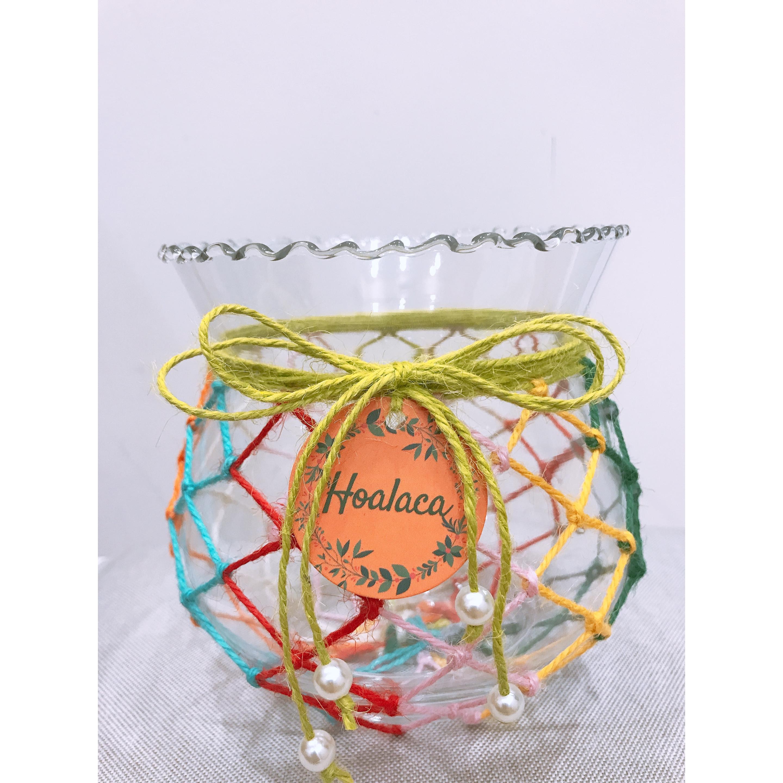 Bình thủy tinh Bình cắm hoa cao cấp - Bình Hoalaca sắc màu đan lưới