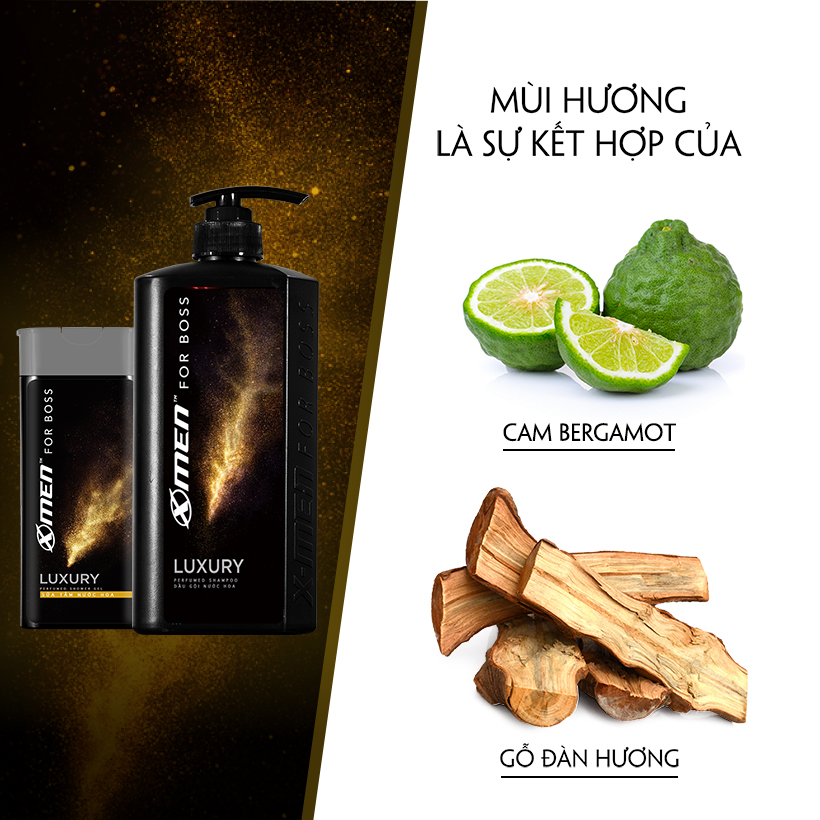 Combo Dầu gội nước hoa X-Men for Boss Luxury 650g + Sữa tắm nước hoa X-Men for Boss Luxury 180g