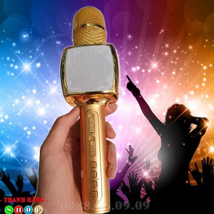 Mic hát karaoke SD 16