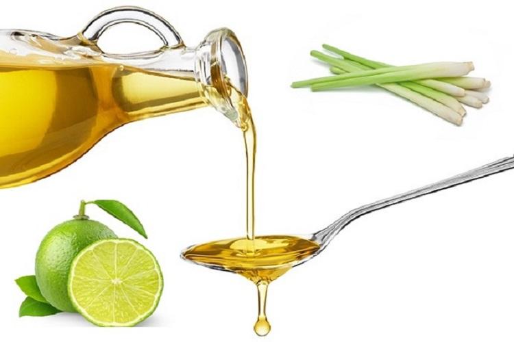 Tinh dầu Sả Chanh Nguyên Chất Nhập Khẩu 10ML - Tinh dầu Xông Phòng Sả Chanh (Lemongrass) Giúp Bảo Vệ Sức Khỏe, Kháng Khuẩn, Đuổi Muỗi Và Thư Giãn Tinh Thần