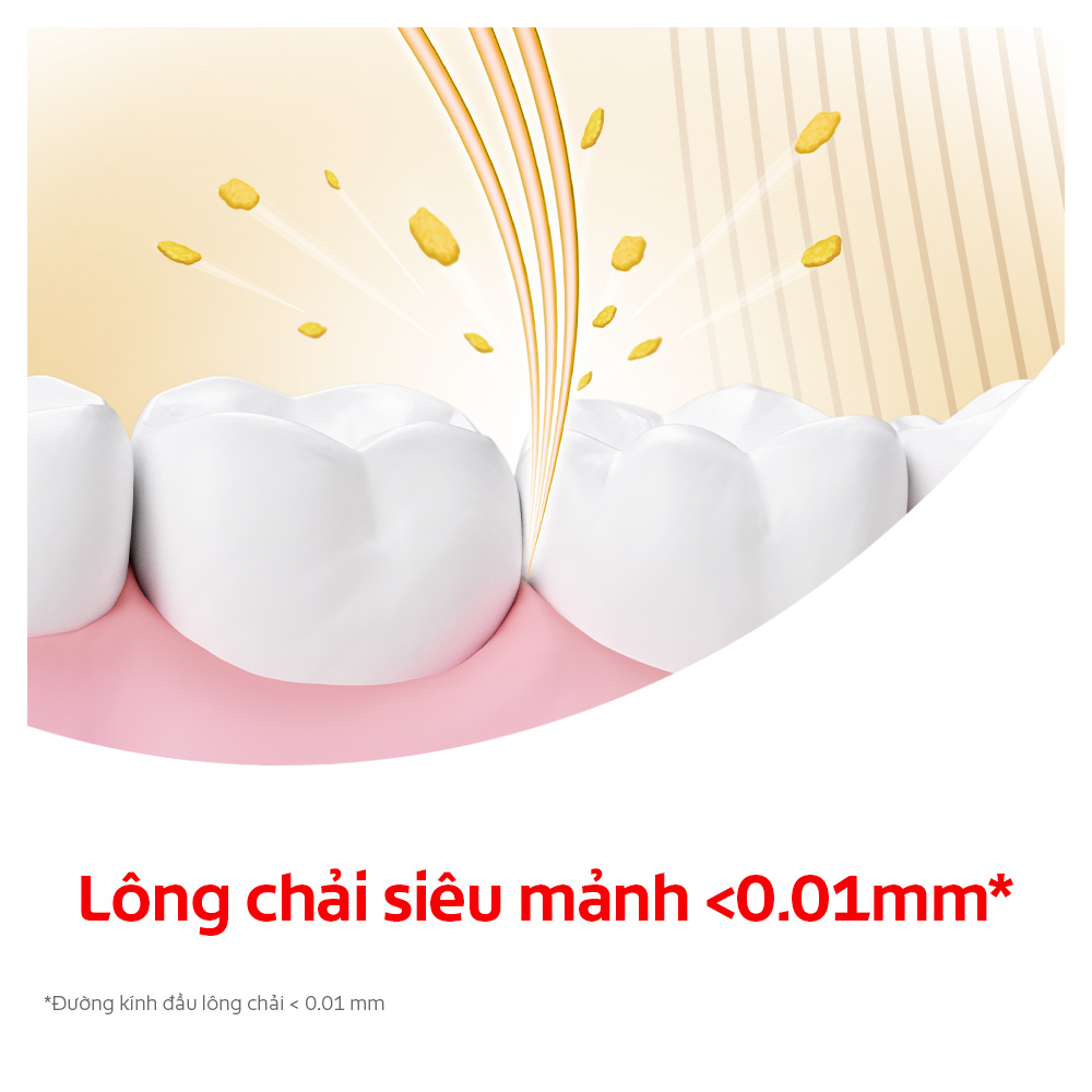 Bộ 2 Bàn chải Colgate Slimsolt Charcoal Gold kháng khuẩn than vàng tặng kèm kem đánh răng Colgate