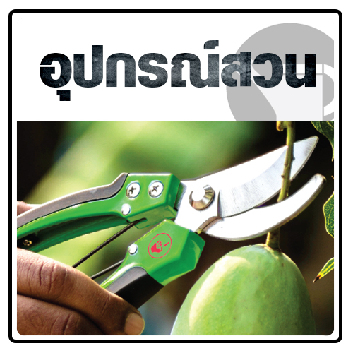 Kéo cắt nhánh lưỡi cong Kanok 8-807-A