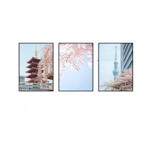 Bộ 3 Tranh Peach Blossom Japan