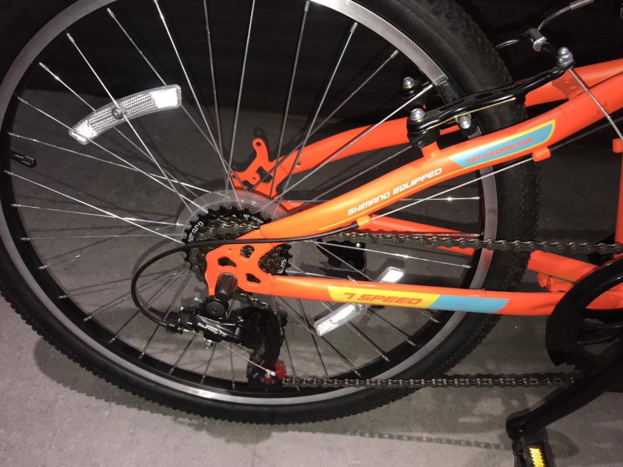 Xe đạp thể thao Phoenix Echo-4.0-W7