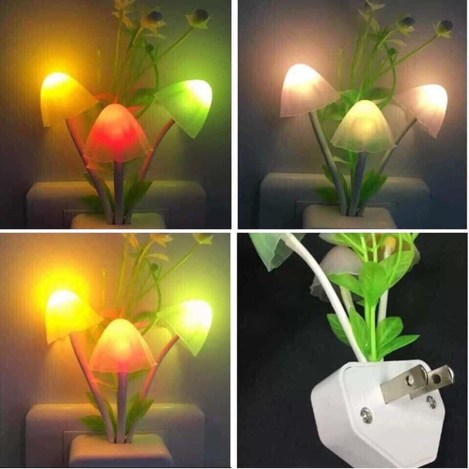 Đèn ngủ cảm ứng hình cây nấm xinh xinh, Đèn ngủ cây nấm cảm ứng sáng tối