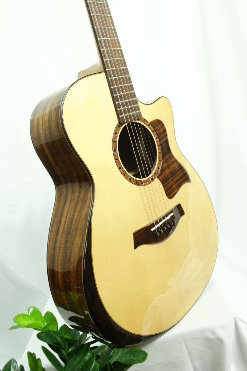 Đàn Guitar Acoustic T600 (Full Solid)
