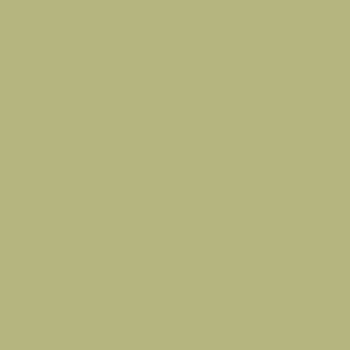 Phông giấy mỹ chụp ảnh studio màu xanh lá mã: 13