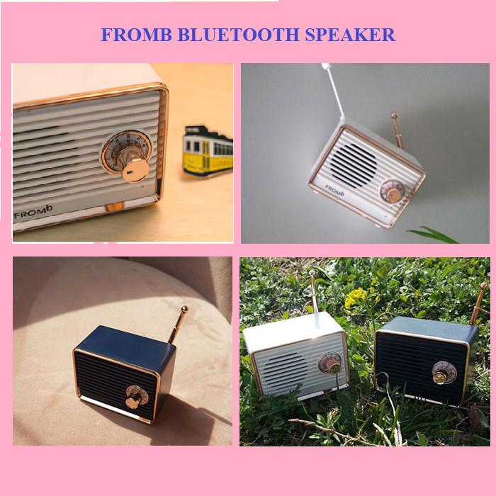 Loa Bluetooth chính hãng Fromb Korea - Giao màu ngẫu nhiên
