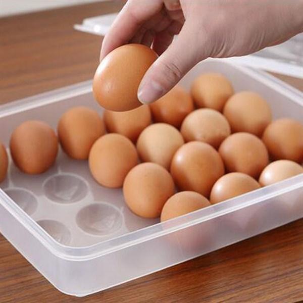 Hộp đựng trứng 1 tầng gồm 24 trứng tiện dụng GS00718