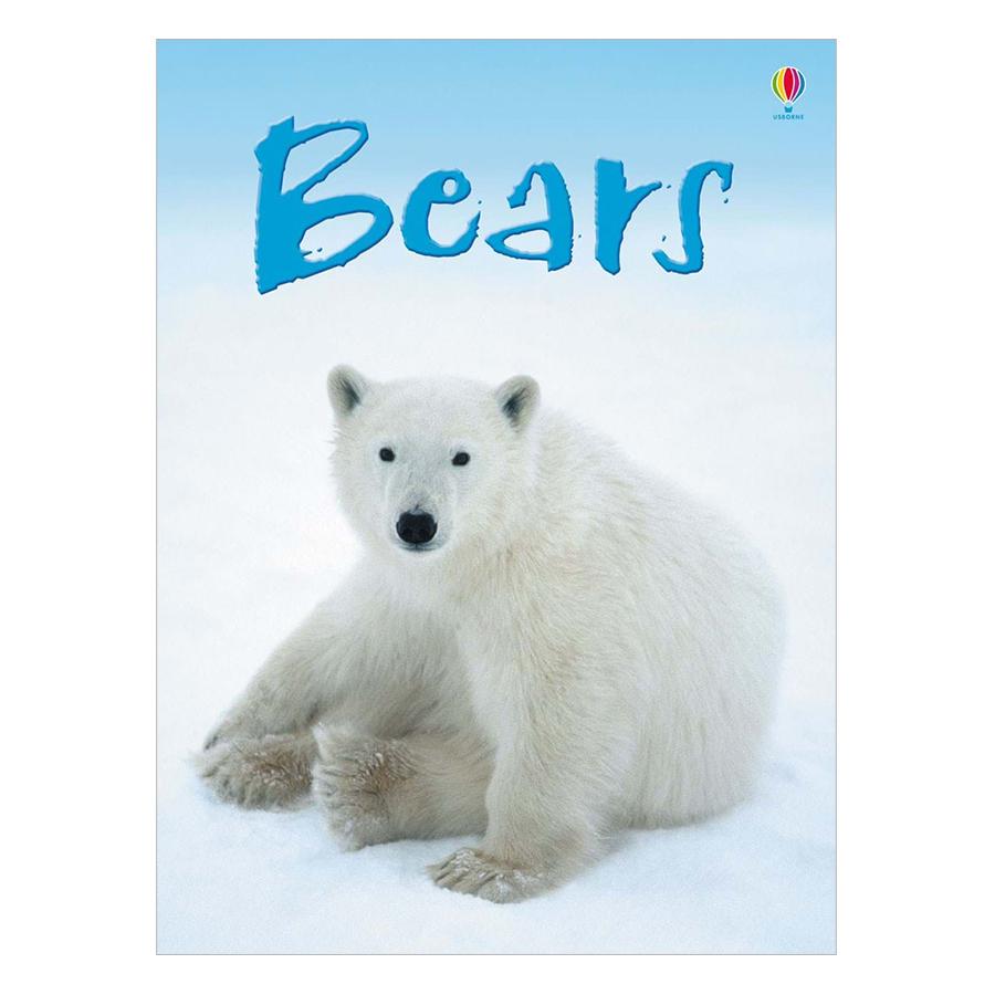 Usborne Bears