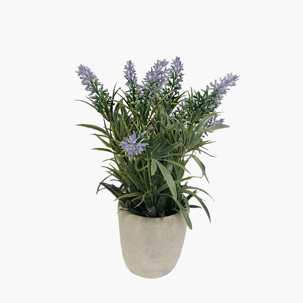 Chậu hoa oải hương nhân tạo SIA