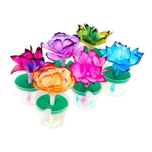 Đồ Chơi Bộ đồ chơi em yêu khoa học - chế tạo bông hoa kỳ diệu CRAYOLA 747409