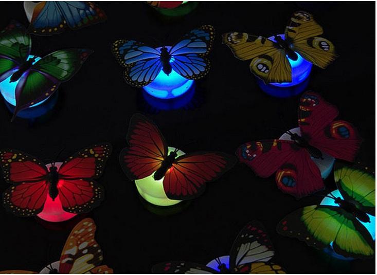 Đèn ngủ hình bướm nhiều màu sắc