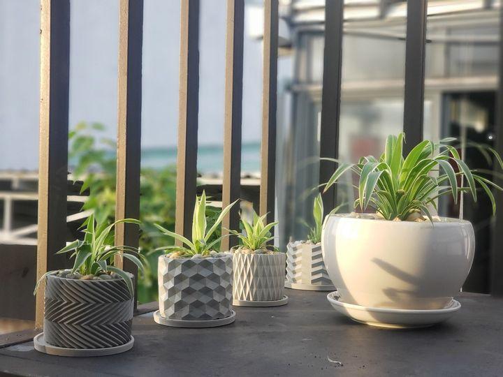 Combo 6 chậu xi măng trồng cây cảnh mini  HÀNG CHÍNH HÃNG CORI  11x8cm thích hợp trồng cây cảnh mini, xương rồng, sen đá kiểu dáng sang trọng phù hợp mọi không gian nhà ở và công ty