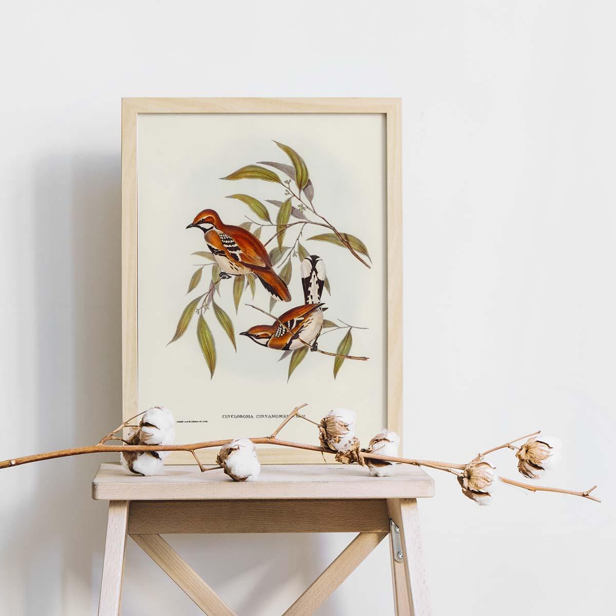 Tranh Canvas treo tường chim sẻ - B017