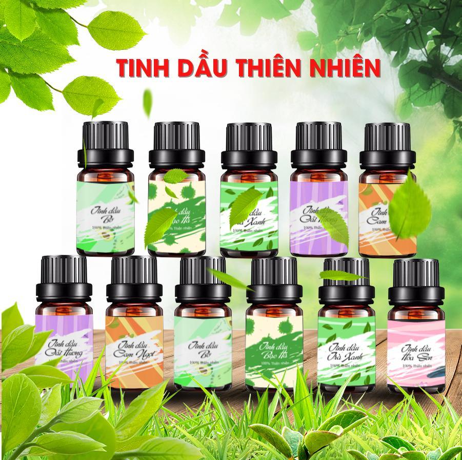 Tinh Dầu Bạc Hà Vina Oils 10ml - Peppermint Essential Oil 10ml - Được Chiết Xuất Từ Thiên Nhiên Nguyên Chất 100% - Dùng Khử Mùi, Kháng Khuẩn, Thư Giản, Đuổi Mũi, Giảm Đau Nhức
