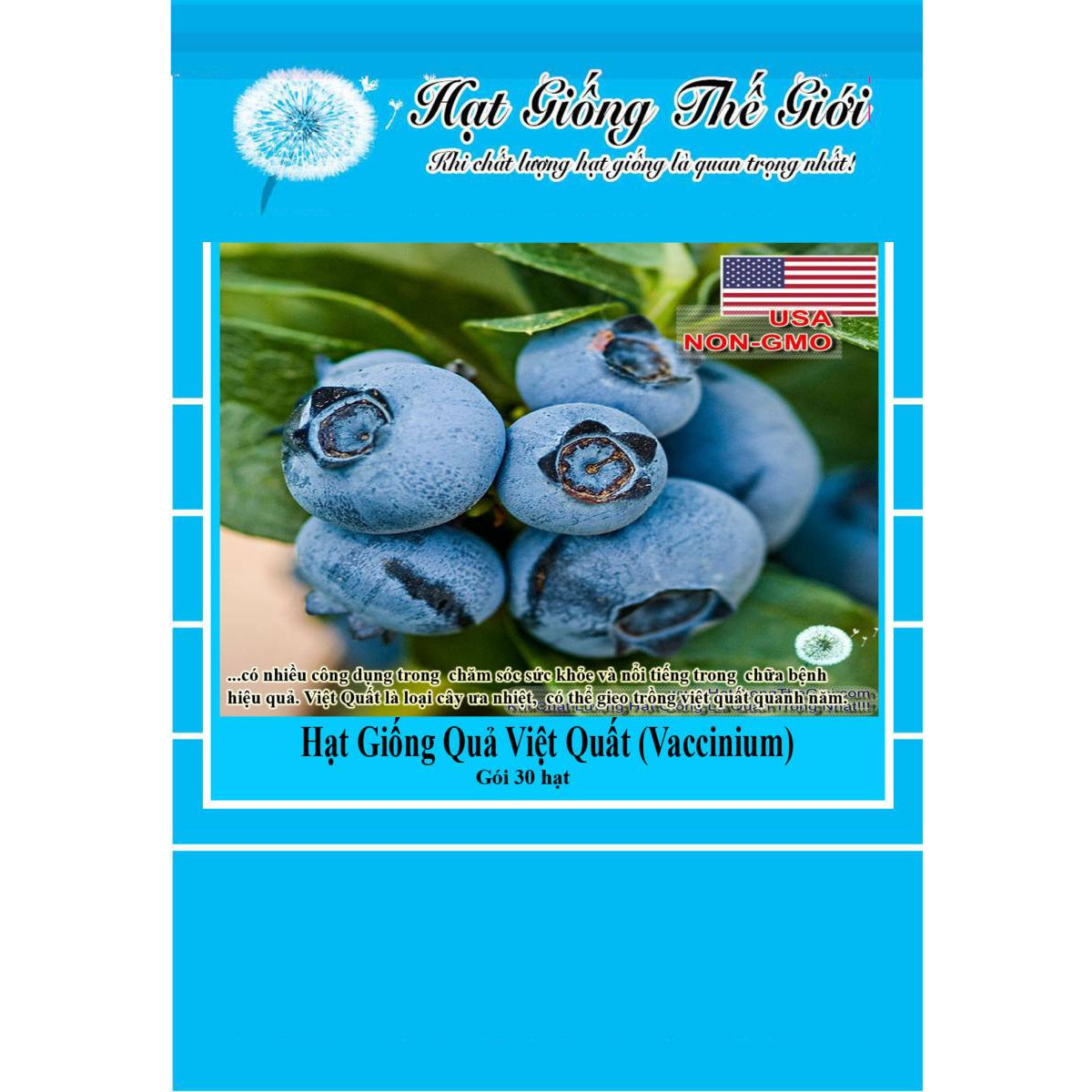 30h Hạt Giống Quả Việt Quất BlueBerry (Vaccinium corymbosum)