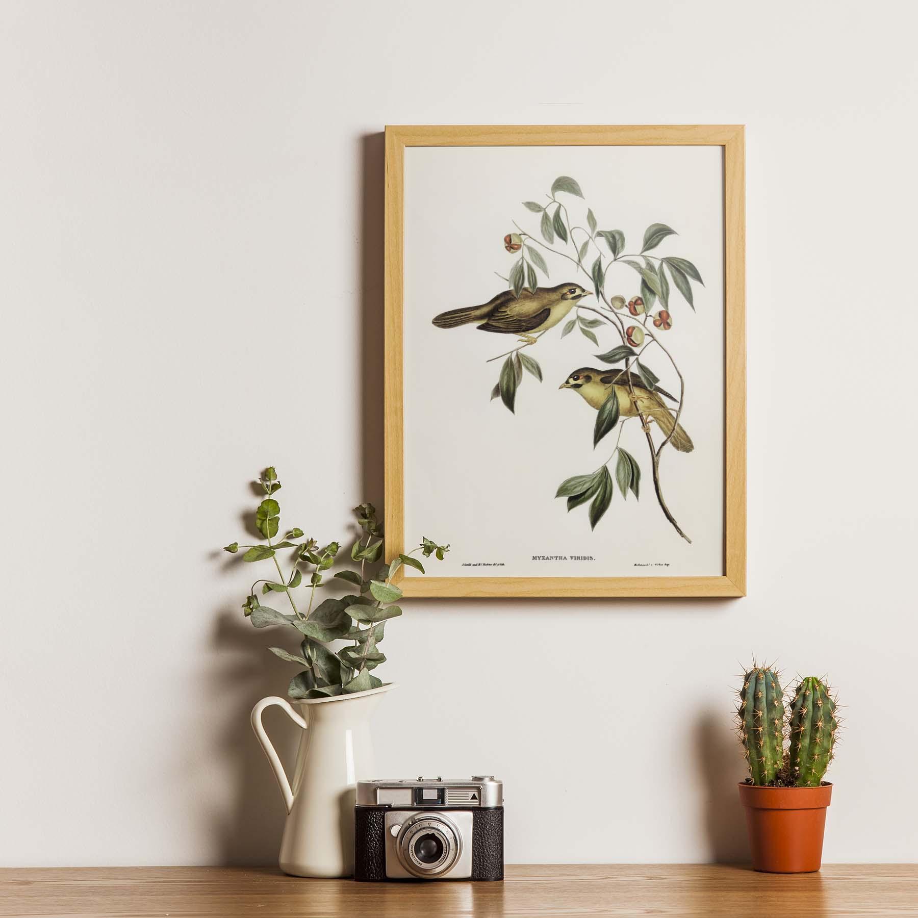 Tranh Canvas treo tường chim sẻ - B003