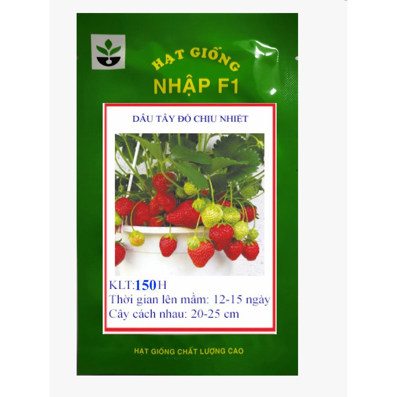 Gói 150 hạt giống dâu tây đỏ chịu nhiệt