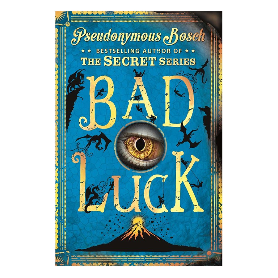 Usborne Middle Grade Fiction: Bad Luck