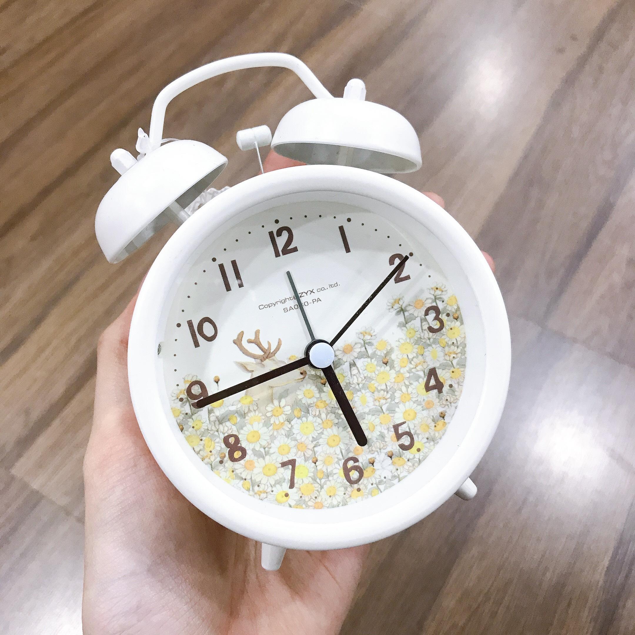 Đồng hồ sắt SA060-PA