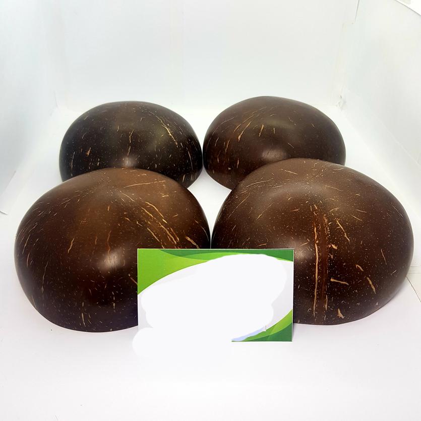 combo 4 chen gáo dừa xuất khẩu