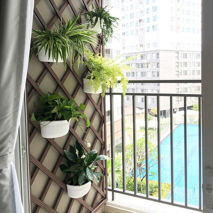 Chậu nhựa ốp tường-Chậu hoa ốp tường trồng cây-Chậu cây-Kích thước D28xR16xC13cm-TẶNG HAI MÓC TREO INOX