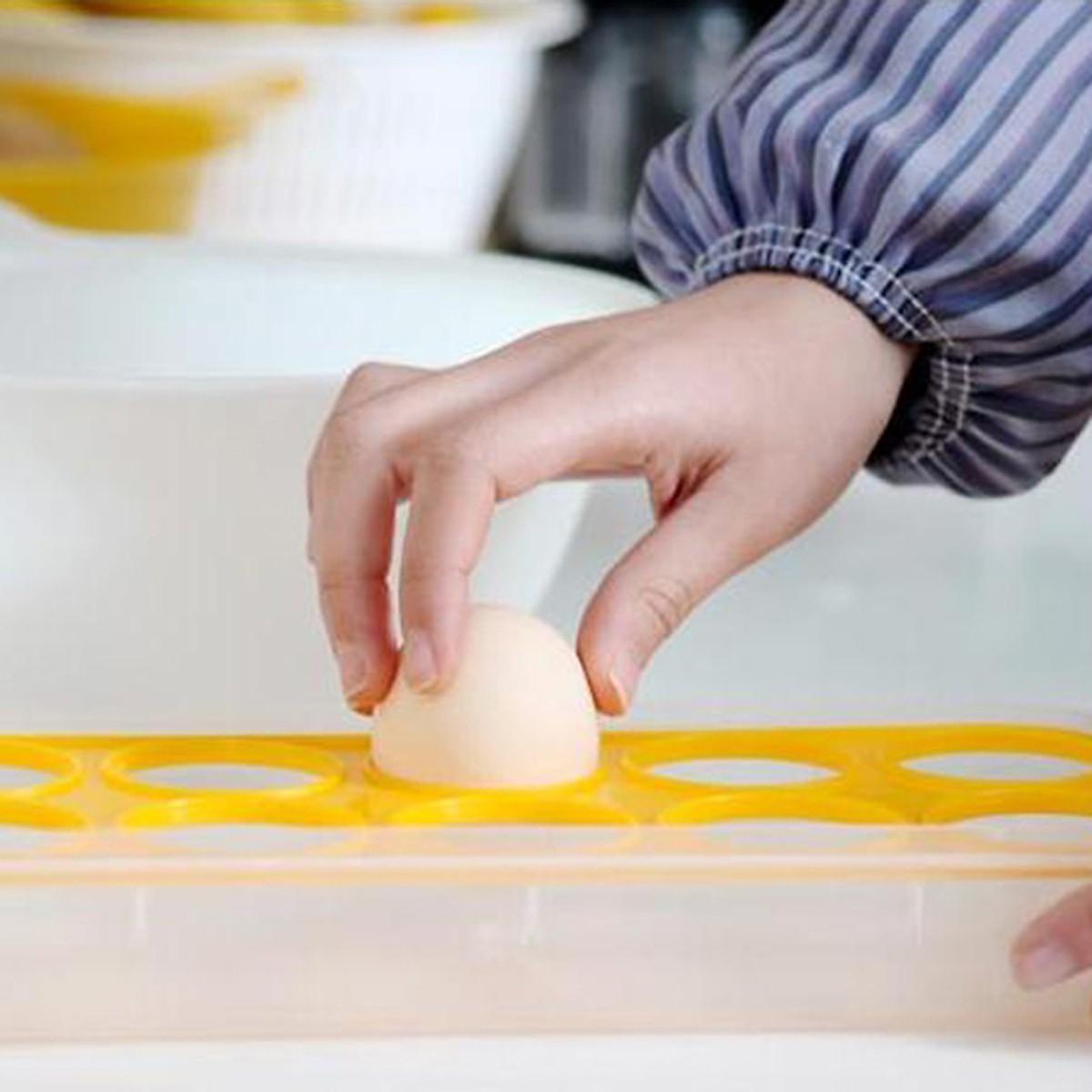 Khay Đựng Trứng chia 10 Ngăn có Nắp  Đậy Nhật Bản
