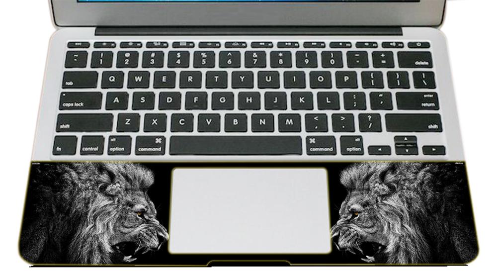 Miếng Dán Trang Trí Laptop Nghệ Thuật LTNT - 764