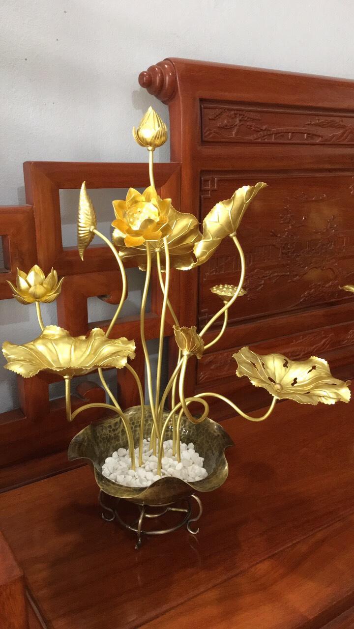 Chậu hoa sen màu gold cao cấp - Decor trang trí