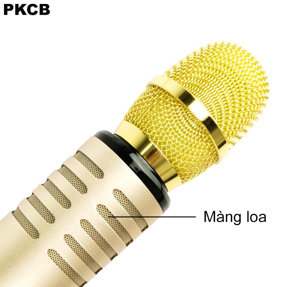 Micro Karaoke Bluetooth cao cấp âm thanh chuẩn HD Bass Treb sống động PKCB14 ROSE GOLD - Hàng Chính Hãng