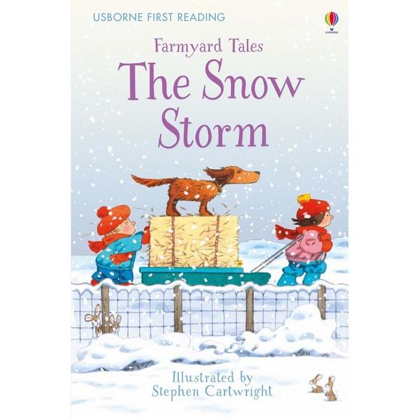 Usborne The Snow Storm