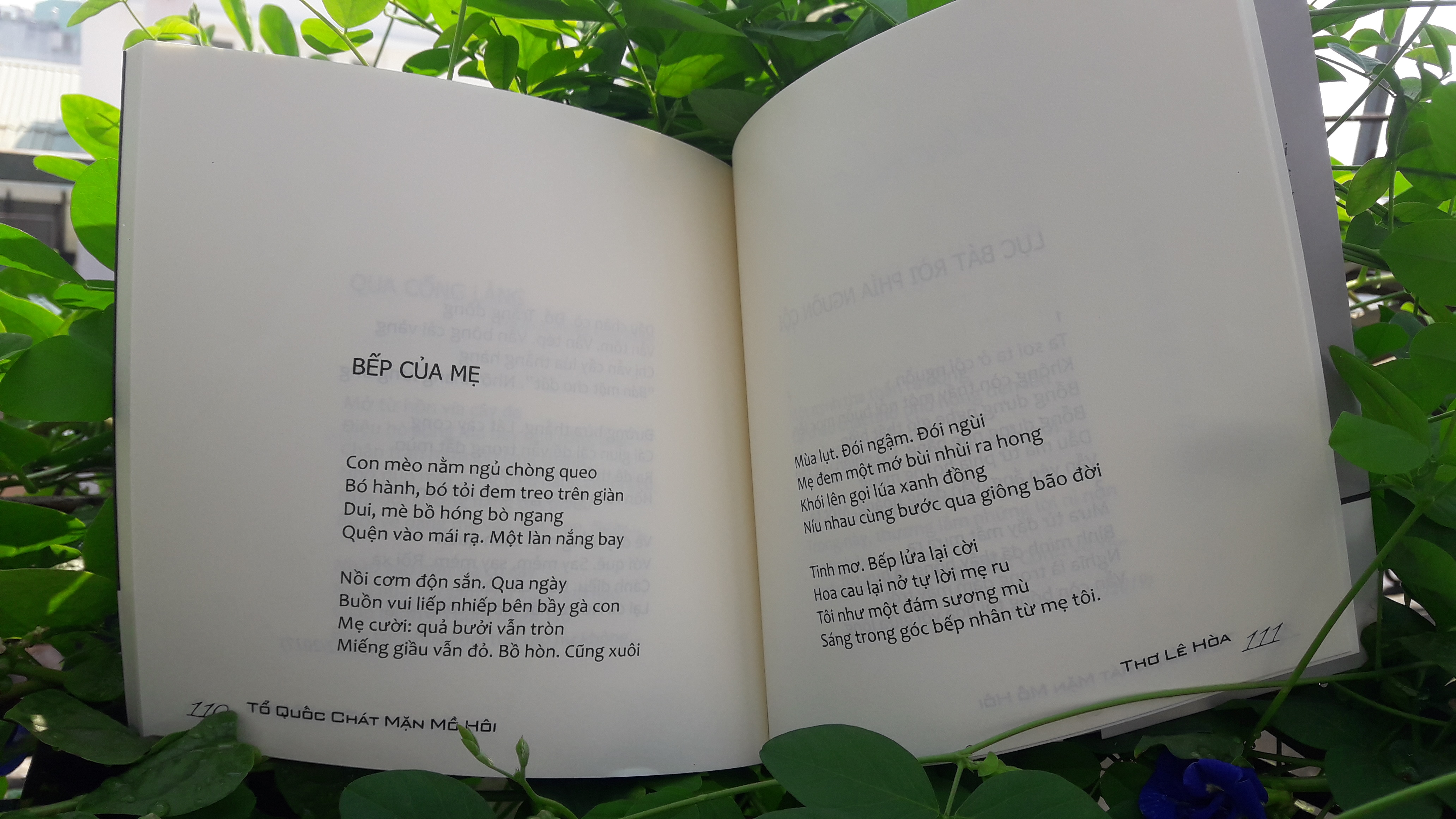 TỔ QUỐC CHÁT MẶN MỒ HÔI (Tuyển tập thơ của Lê Hòa viết về Tổ quốc - Tình yêu - Thân phận...)