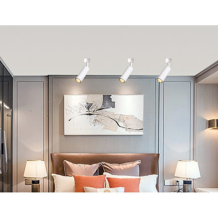 Combo 4 đèn LED Rọi Ống Bơ 20W ốp trần, tường, đèn soi tranh, đèn trang trí