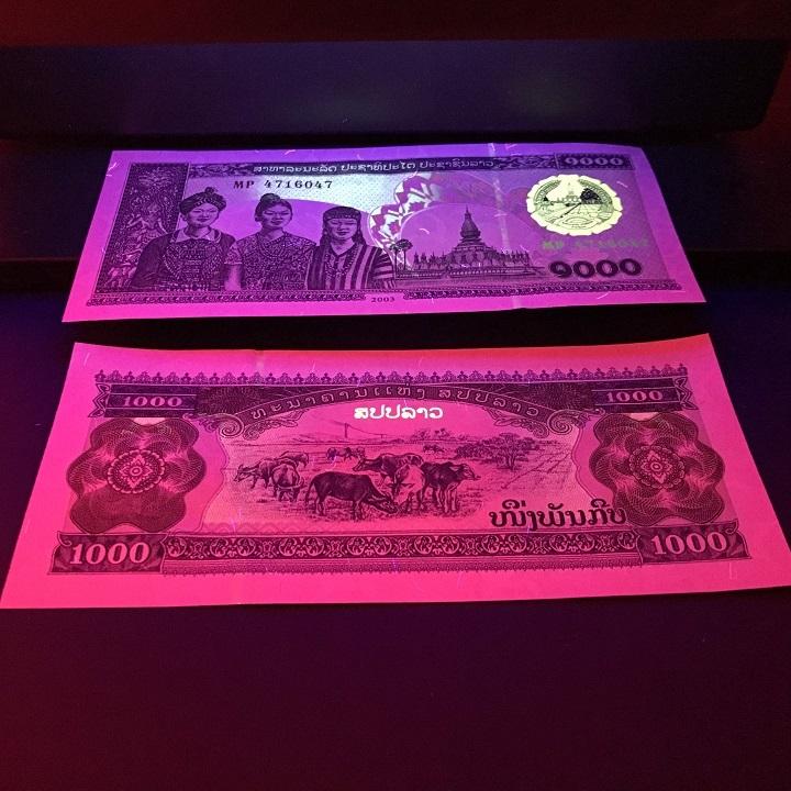 Combo 30 tờ lưu niệm hình con Trâu của Lào, dùng để sưu tầm, lưu niệm, làm tiền lì xì độc lạ, may mắn, ý nghĩa - TMT Collection - SP005103