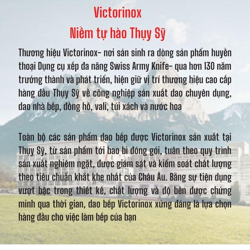 Thanh Thép Mài Dao Victorinox 18cm Tay Cầm Nhựa - Thụy Sỹ (Hàng Chính Hãng)