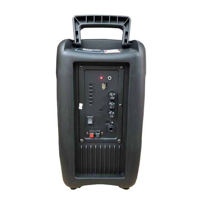 Loa kẹo kéo karaoke bluetooth Temeisheng A8-10 - Hàng nhập khẩu